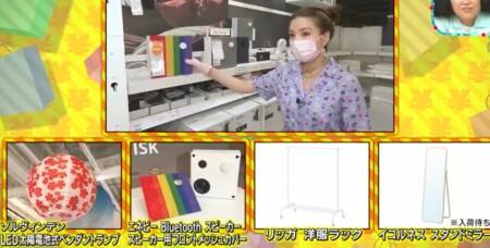 王様のブランチ 買い物の達人で仲里依紗が購入したIKEA 丸型ペンダントランプ、スピーカー、洋服ラック、鏡