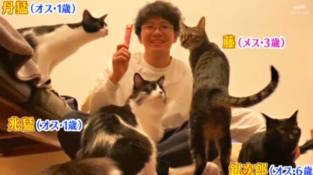 アメトーーク 猫メロメロ芸人の出演者&飼い猫一覧 ミキ亜生 兆猛、丹猛、藤、銀次郎