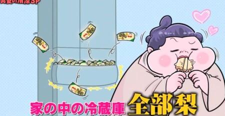 マツコの知らない世界 ガリガリ君梨味の発売当初は冷蔵庫を埋め尽くしていたというマツコ