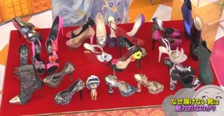 マツコの知らない世界 叶姉妹の履けない靴コレクション