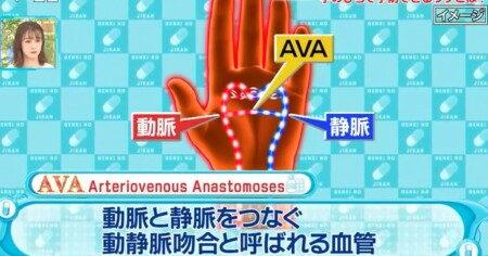 健康カプセル ゲンキの時 100%予防できる熱中症対策 手の平のAVAとは