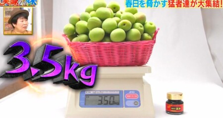 それって実際どうなの課 オードリー春日が選ぶ日本一酸っぱいものランキングベスト10結果は?第1位 紀州の赤本 梅肉濃縮エキス