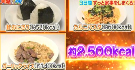 それって実際どうなの課 家事ダイエットのカロリー消費で痩せる?餅田コシヒカリ検証結果 2日目食事メニュー