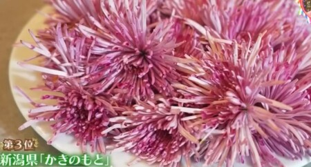 チコちゃんに叱られる 永山先生が選ぶ美味しい食用菊ベスト3 第3位 かきのもと
