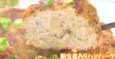 マツコの知らない世界 新生姜の世界で豊田真奈美が紹介した新生姜アレンジレシピ一覧 新生姜入りハンバーグ