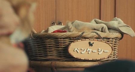 ドクターX 2021 シーズン7 神原名医紹介所の飼い猫ベンケーシー&ギャノン登場シーンまとめ 第1話 ベンケーシーの寝床