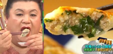 マツコの知らない世界SP 餃子vs焼売の世界で話題の餃子&アレンジレシピ一覧 池尻餃子